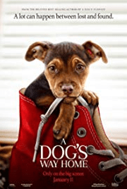 "Monday Movie: ""A Dog's Way Home"""
