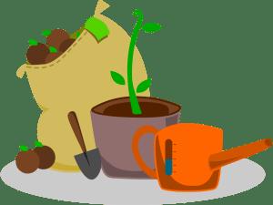 Beginning Gardening & Seed Saving Class