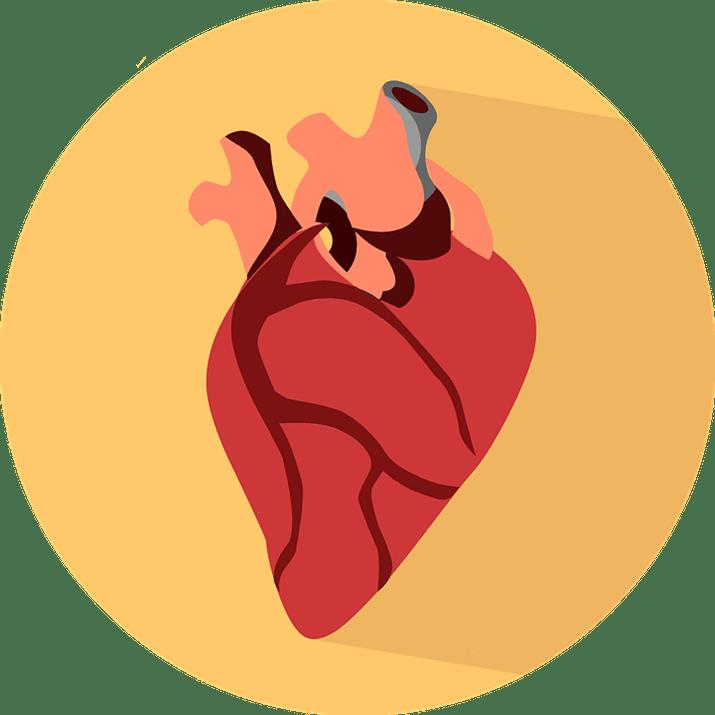Book Talk on Heart: A History